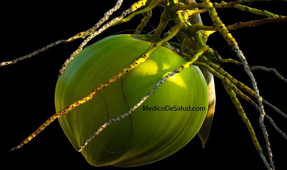 ¿Cuáles son los beneficios del vinagre de coco? ¿el vinagre blanco es bueno para la salud? ¿El vinagre blanco es bueno para la salud? Screenshot 57