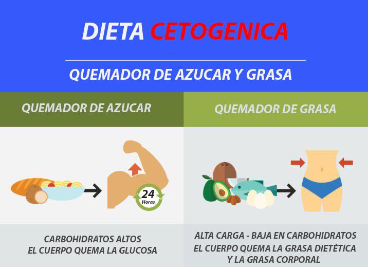 Dieta Cetogénica - Beneficios, Perdida de Peso - Todo lo..