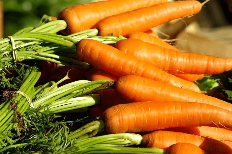 Posibles causas de la coloración fecal de naranja diarrea naranja causa síntomas diagnostico tratamiento diarrea naranja Diarrea Naranja: Causa, Síntomas, Diagnostico y Tratamiento Posibles causas de la coloraci  n fecal de naranja
