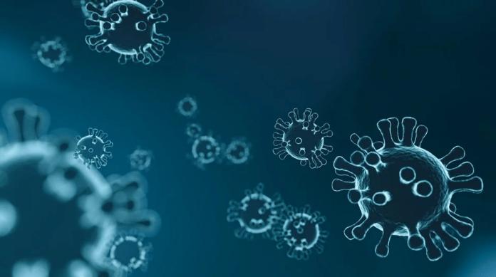 Coronavirus: Consejos para viajeros